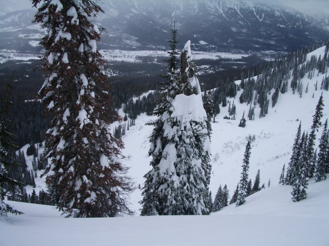 fernie_day_15_steep_and_deep